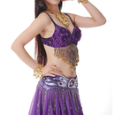 BellyLady Belly Dance Tribal Bra-Top