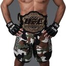 Advanced Graphics 914 UFC - Georges St Pierre- 71