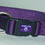 Hamilton Adjustable Dog Collar - Purple - 3/8  X 7-12