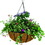 Gardman Forge Hanging Basket With Coco Liner - Black - 14 Inch