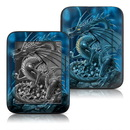 DecalGirl Barnes and Noble Nook Touch Skin - Abolisher (Skin Only)