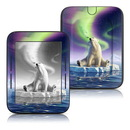 DecalGirl Barnes and Noble Nook Touch Skin - Arctic Kiss (Skin Only)