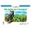 Creative Teaching Press CTP8248 De Quien Es El Bosque - Whose Forest Is It