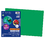 Pacon PAC103578 Riverside 12X18 Holiday Green - Construction Paper 50Shts