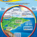 Teacher Created Resources TCR7743 Water Cycle Chart