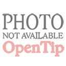 Custom 10W X 5 X 13H Tulip Plastic Frosted Brite Shopper