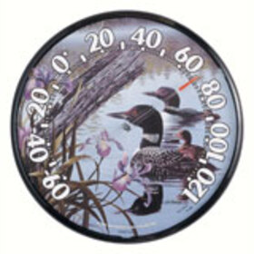 Accurite ACCURITE01726 12.5 Loons Thermometer
