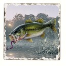 Counter Art CART11077 Bass Fish Single Tumbled Tile Coaster