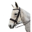 Intrepid International AEBD6151 Exselle Elite Plain Raised Padded Bridle With X Brow Brown