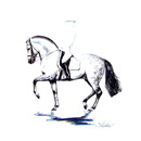 Haddington Green Equestrian Art Jan Kunster Horse Prints - Invasor (Dressage)