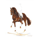Haddington Green Equestrian Art Jan Kunster Horse Prints - Brandy (Dressage)