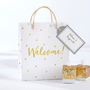 Kate Aspen 28266NA Gold Foil Dot Welcome Bags (Set of 12)