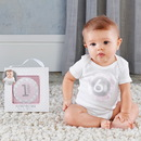 Baby Aspen BA16098PK My First Milestone Baby Month Stickers (Pink)