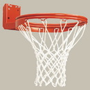 Bison BA31N Double - Rim Rear Mount Fixed Basketball Goal