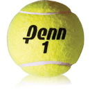 Penn Championship Extra - Duty Tennis Balls