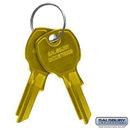 Salsbury Industries 3699 Key Blanks - for Standard Locks of 4B+ Horizontal Mailboxes - Box of (50)