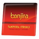 banjira Flat Back Tanpura String Set