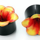 Elementals Organics ORG764 Horn Plug with Painted Pink/Yellow LEATHER FLOWER CAP Inlay Organic Plug 8mm-24mm - Price Per 1