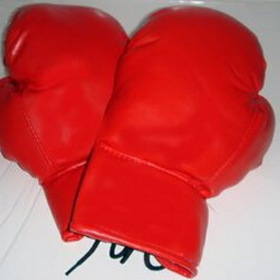 "12""x7""x5"" 14 Oz Red Adult Boxing Gloves, Price/piece"