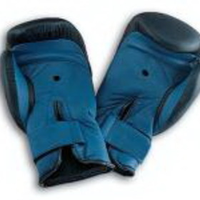 SPRI Boxing Gloves 16 Oz