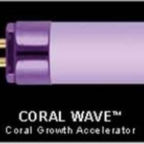 "Wavepoint Coral Wave 39w 33"" Ho T5 Coral Growth Lamp"